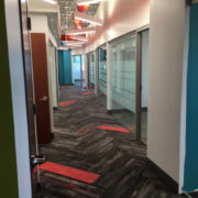 Commercial Carpet for office