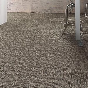 Commercial Carpet In South Florida
